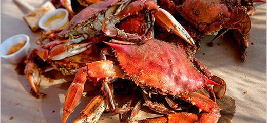 Food from Harbour House Crabs in Eastern Shore, MD