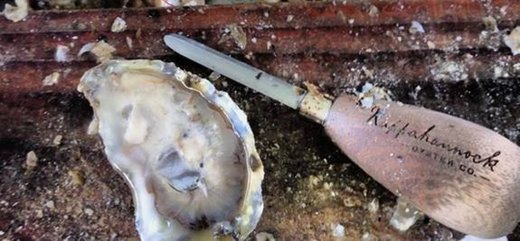 Food from Rappahannock River Oysters in Topping, VA