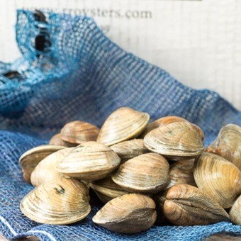 Rappahannock River Olde Salt Clams Variety Pack- 75 count
